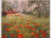 poppies-wild-in-forest_frmed_jpeg