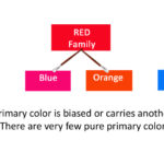 Why is Color Bias Key to Mixing Color?