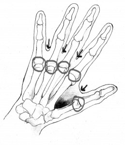 CAM-sketchof hand-Webbing